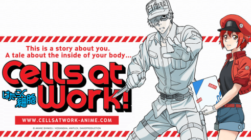 Cells-at-Work-Feature
